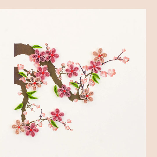 cherry blossoms quilling card