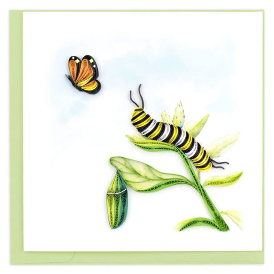 caterpillar-quilling-card