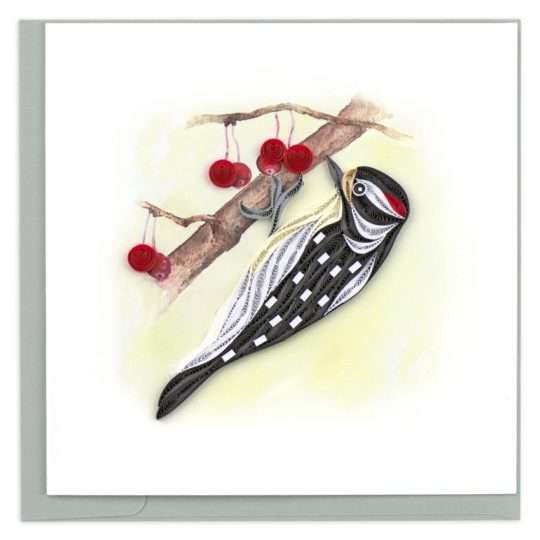 downy woodpecker quilling