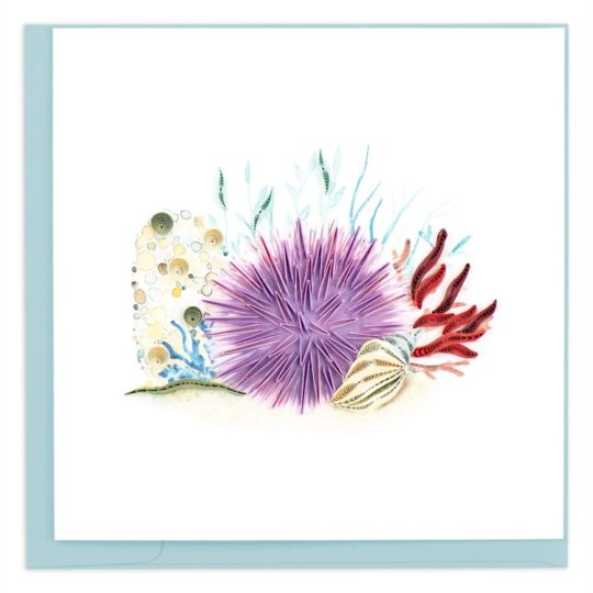 sea urchin quilling card