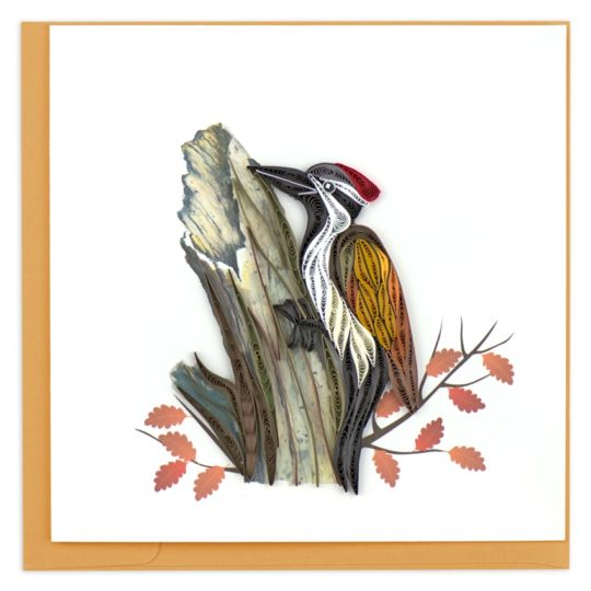 woodpecker quilling card
