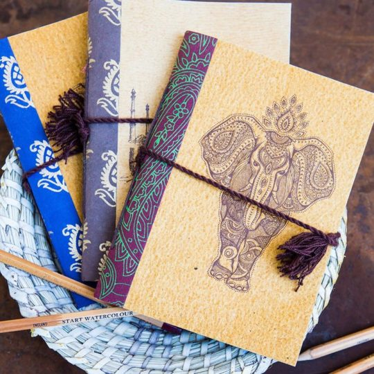 jaipur elephant journal styled