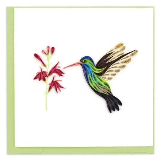 broad-billed-hummingbird-quilling-card